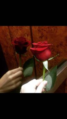 No San Valentín